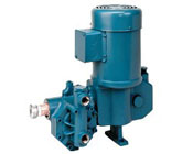 Neptune Chemical Hydraulic Metering Pumps